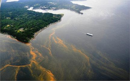 algae-bloom-2992461-large