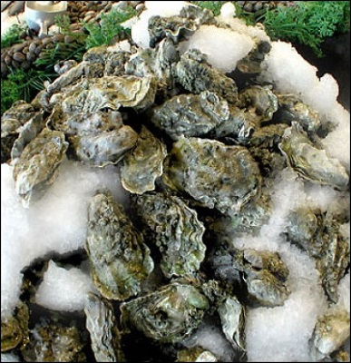 oysterprices