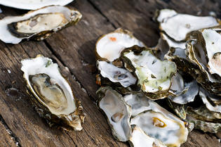php-oysters-by-min-lee